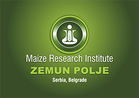 Maize research Institute Zemun Polje Belegrade – Zemun